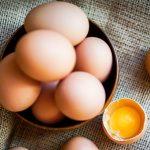 Descodificação das potencialidades do Ovo